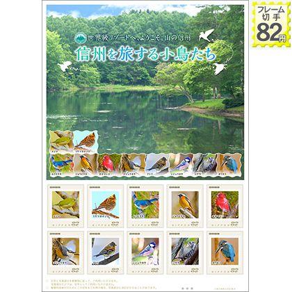 信州を旅する小鳥たち