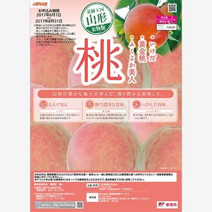 桃 黄金桃3kg