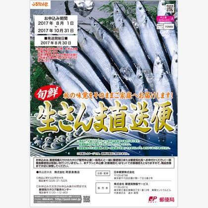 A生さんま140g×6(氷同梱)