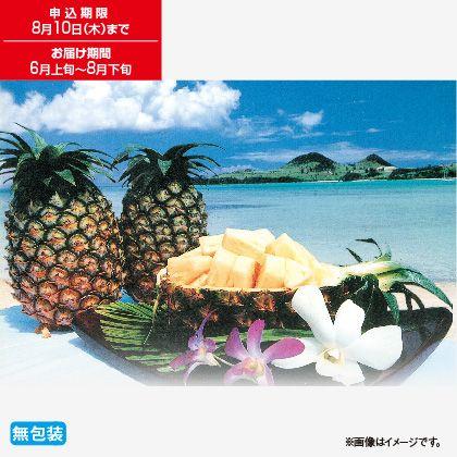 石垣島産パイン4.5Kg
