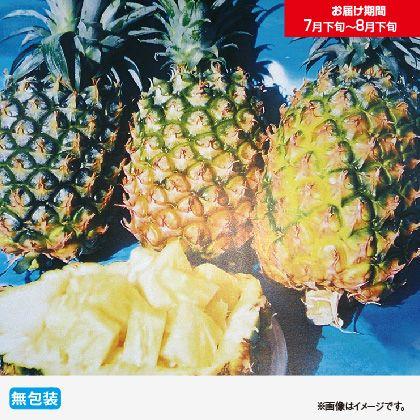 沖縄県産パイン2.5Kg