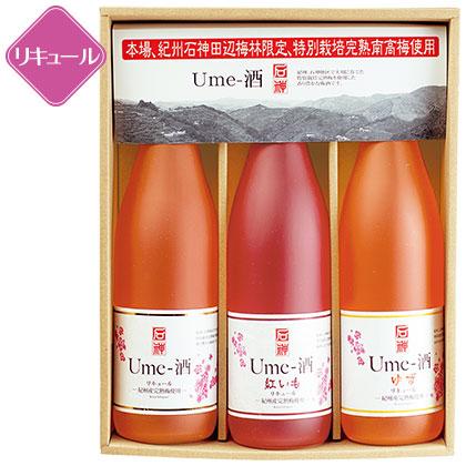 濱田 紀州石神Ume−酒セット/酒(アルコール24%以下)