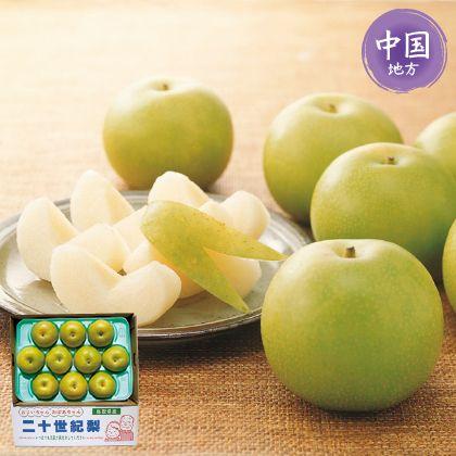 鳥取県産 二十世紀梨