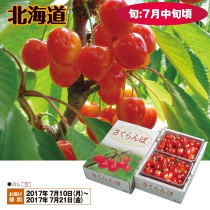 北海道のさくらんぼ(佐藤錦)Lサイズ 500g×2(バラ詰)