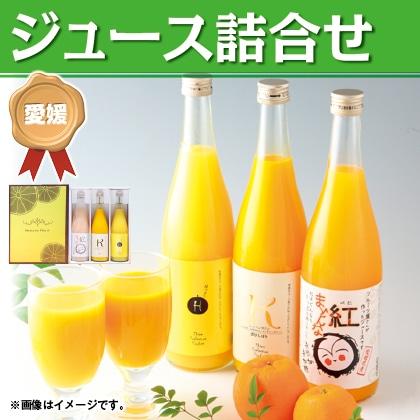 希少柑橘ジュース 3本