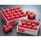 青森りんご「サンふじ」 3kg