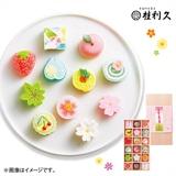 桂利久 京の半生菓子