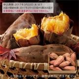 種子島産 安納芋 2kg