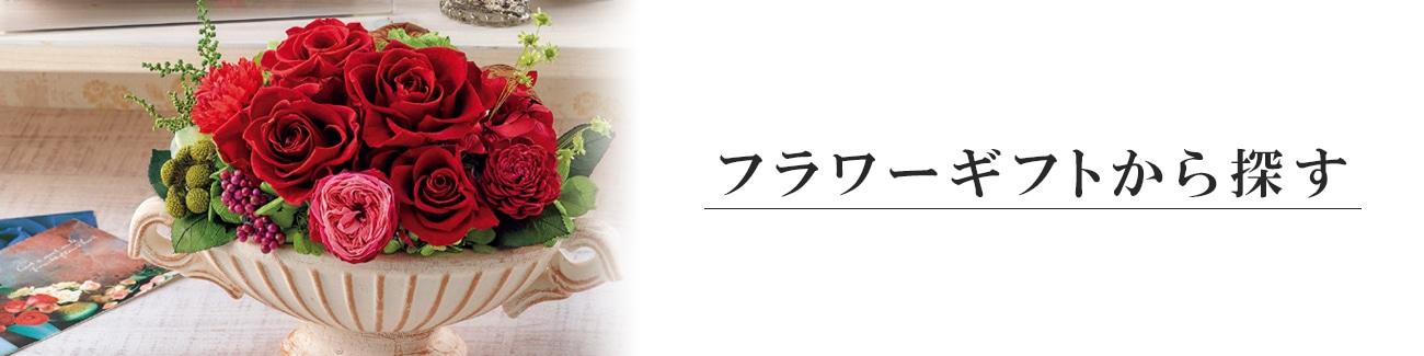フラワーギフト花,花卉,球根