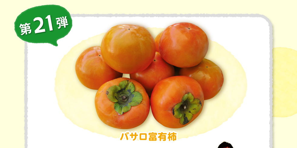 第21弾 バサロ富有柿