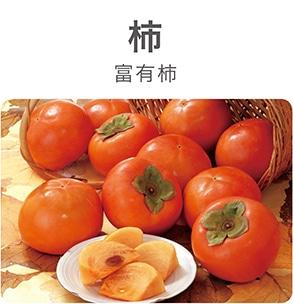 柿 富有柿